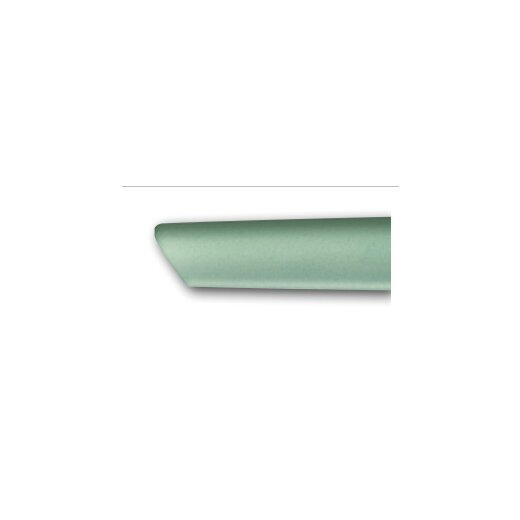 Swiss Modern Besteck-Set , 12-teilig ,Mint-grün mit Tafel/Tomatenmesser
